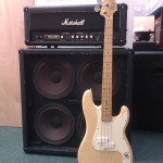 Marshall VBA400 4x12 rig with Fender Elite Precision Bass